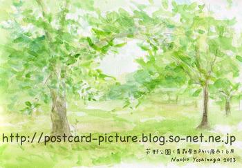130619_11sg_s.jpg
